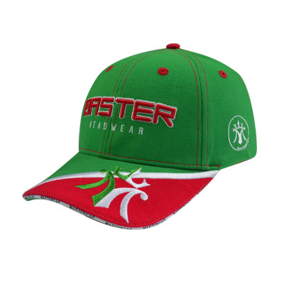 3D Embroidery Baseball Cap with Pinting
