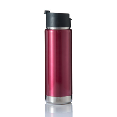 EVERICH 25202 D/W Stainless Steel Thermos Water Bottle with Flip Lid