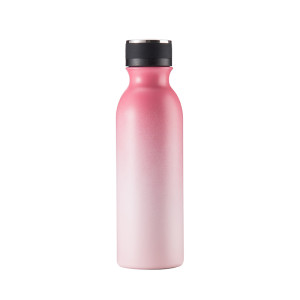 Everich 2547B Stainless Steel Vacuum Insulated Bottle