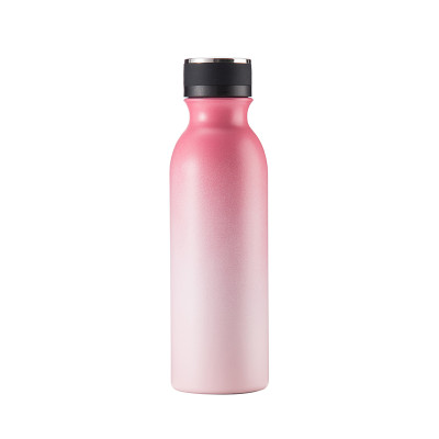 EVERICH 01590 Stainless Steel Insulated Vacuum Bottle