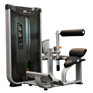 Commercial Gym Equipment FITNESS Lower Back