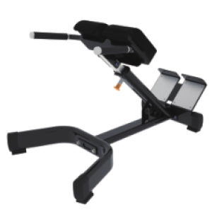 Commercial Gym Equipment FITNESS Back Extension Bench