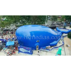 Big blue whale theme park