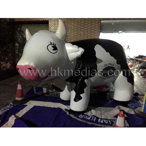 Inflatable  dairy cattle