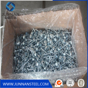 hot sale galvanized smooth Umbrella head Roofing Nails