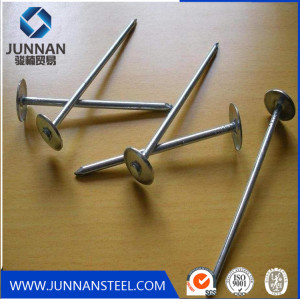 Q195 comman wire nails hot sale on construction made in Tangshan