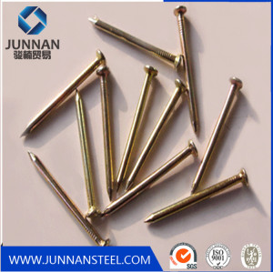 competitive price galvanized common wire nails from factory