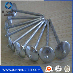 Umbrella head rooofing nails /galvanized hardened steel concrete steel nails with cheap price