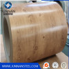 PPGI Stock Galvanized Steel Coil PPGI Price Zinc Sheet
