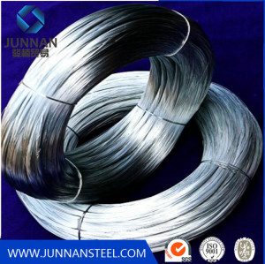 Hot Dipped or Electro Galvanized Iron / Steel Wire