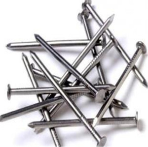 polished common wire iron nails