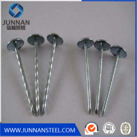 High quality wire nails factory, common wire nails price, steel wire nails manufacture in china