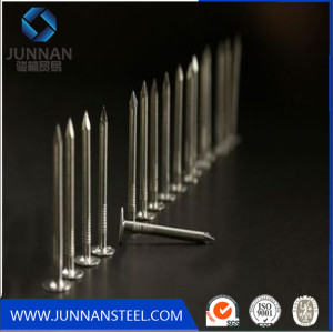 Galvanized common nail/common iron nail factory manufacturer in China