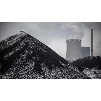 Global thermal coal demand is expected to fall by 2% in 2025