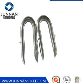 Flat Head Steel U-type Nail Ansi Standard Smooth Shank U Type Nail