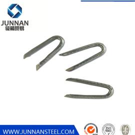 U Type Staple N Series Staple Wire Staple Nail 10050