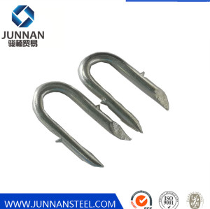 Factory Supply Sharp Point Barbed Fence Staple U Type Nails