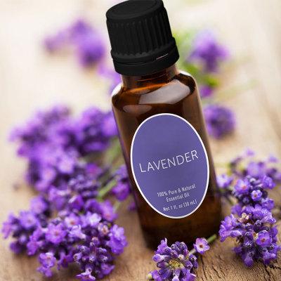 GMP factory supply 100% pure lavender massage oil refresh lavender natural oil