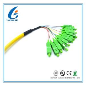 CATV / ODF SC Optical Fiber Pigtail 12 Core Bundle With Zirconium Dioxide Ferrule