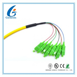 Bundle SM Optical Fiber Pigtail Patch Cord 8 Core Multimode With SC / APC Connector