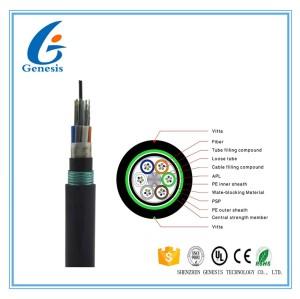250um hydrolyse de fibre optique extérieure de gaine de PE du noyau 2KM du câble 48 résistante