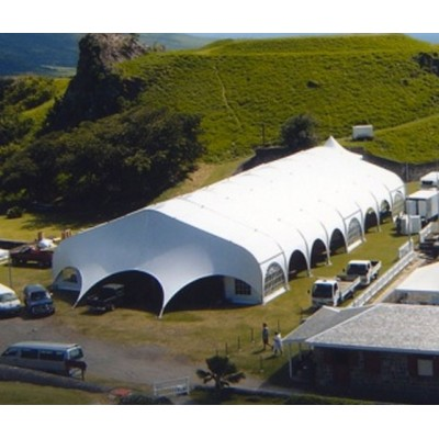 Big Aluminum frame Curve Marquee Tent for wedding party events