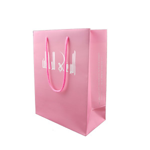 Fashion and hot sale printing colored paper bag with rope