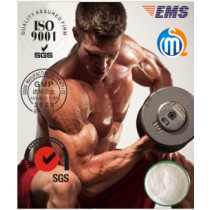 White Powder Testosterone Isocaproate Test ISO 99% Tes Isocaproate Musclebuilding