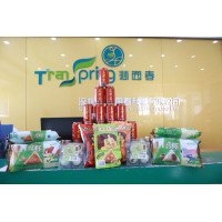 Transpring Celebrate Dragon Boat Festival