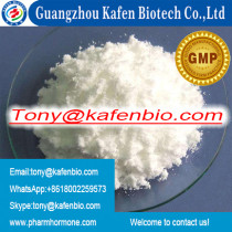 High Purity 99.5% Tetracaine White Fine Powder for Local Anaesthesia