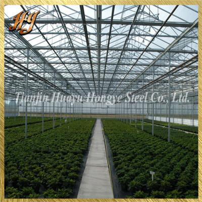 Galvanized Steel Pipe for Venlo Greenhouse Frame Kits