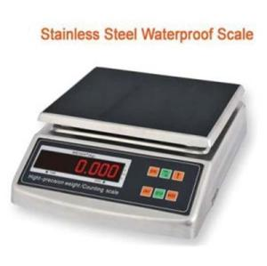 Stainless Steel Economic Weighing Scale