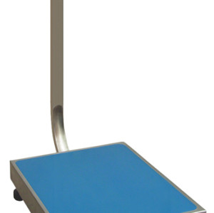 Electronic Stainless Steel Platform Scale