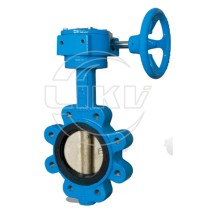 Lug type butterfly valve with gearbox