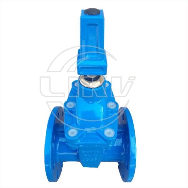 resilient gate valve with cap