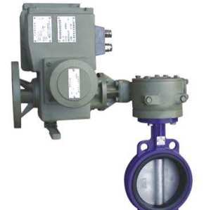 electric desulfurization butterfly valve