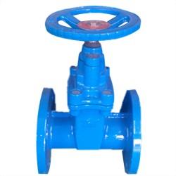 F5 Gate valve