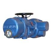 Multi turn valve electric device