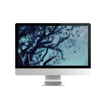 Best all in one desktop reviews 21.5 inch monoblock computer for sale