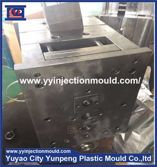 Plastic Electric Shell Case Injection Mold/Mould (from Tea)