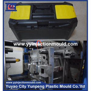 Professional OEM portable plastic mould work tool box mould supplier