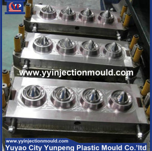 Plastic auto front light shell injection moulds (from Tea)