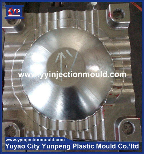 Yuyao plastic tray injection moulding  (from Tea)