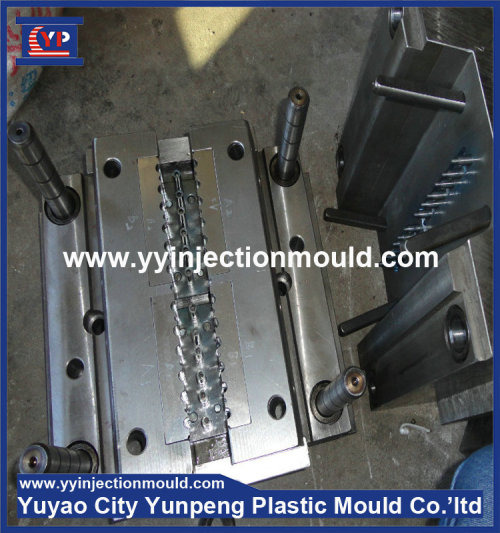 New products precise ballpoint pen plastic injection mould (from Tea)