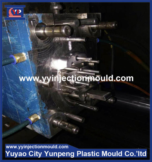 custom plastic home appliance electric shell injection mould (From Cherry)