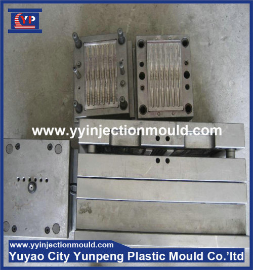 Customize design multi cavity plastic toothbrush injection mould (from Tea)