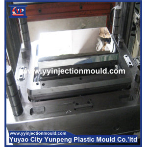 Supply high quality soap box mould injection plastic mold making (from Tea)