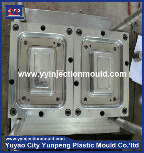 Professioal mold manufacturer provide plastic injection box mould (from Tea)