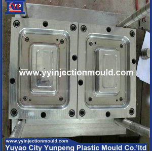 China supplier OEM cheap storage case/ box/container plastic injection mold factory (from Tea)