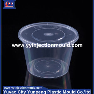 Special Plastic Thin Wall Box Mould/plastic container mold/plastic container mould (from Tea)